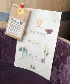 Pflanzkübel aus gebrauchtem Weinfass - BeePart Aktion