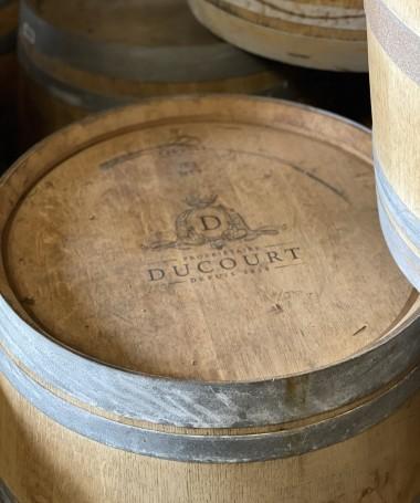 """""""Ducourt"""" Branding"""